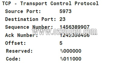 DHCP Nedir